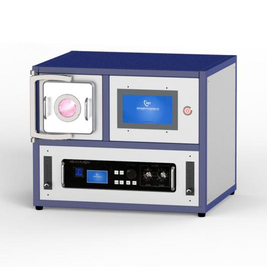 300W 2L plasma cleaning machine